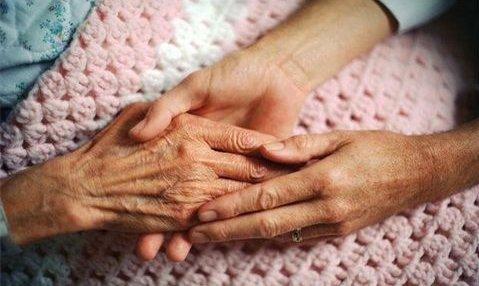 Ally Senior Care - Photo 1 of 8